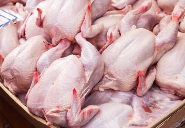 China binnenkort grootste importeur van Russisch pluimveevlees?