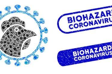 Corona en de huidige impact op de Belgische pluimveesector
