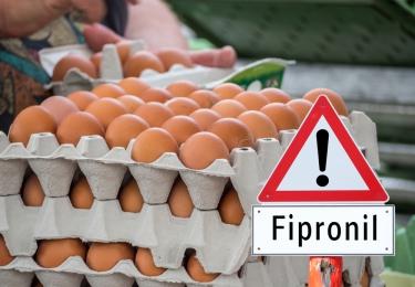 Eigenaren Chickfriend vervolgd om fipronil-affaire