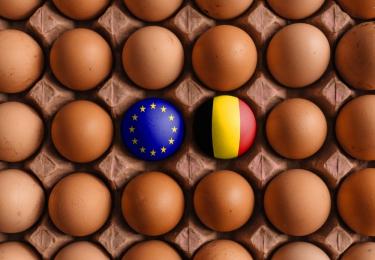 Geen verzilvering van Europese eierexportstijging
