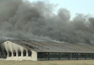 Kippenstal in Avekapelle volledig uitgebrand