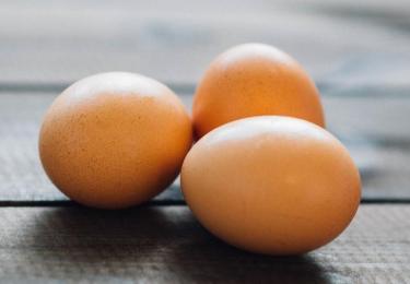 Salmonellamalaise in Poolse eieren duurt voort