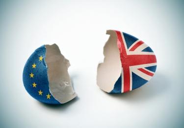 Toenemende bezorgdheid bij Britse vlees –en eierindustrie over No-deal Brexit